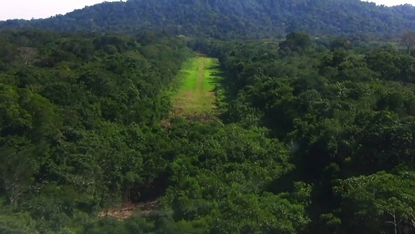 Amazon jungle airstrip